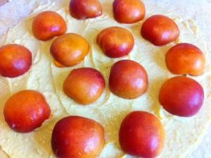 crème d'amandes, abricots