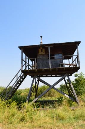 Autour du lac de Neusiedl (20)