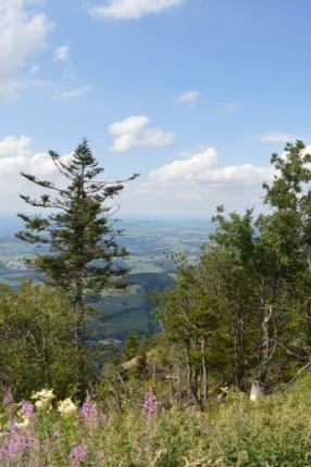Région de Salzbourg (11)