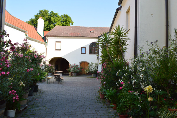 Weingut Tinhof (1)
