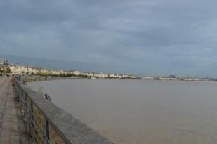 Bordeaux (61)