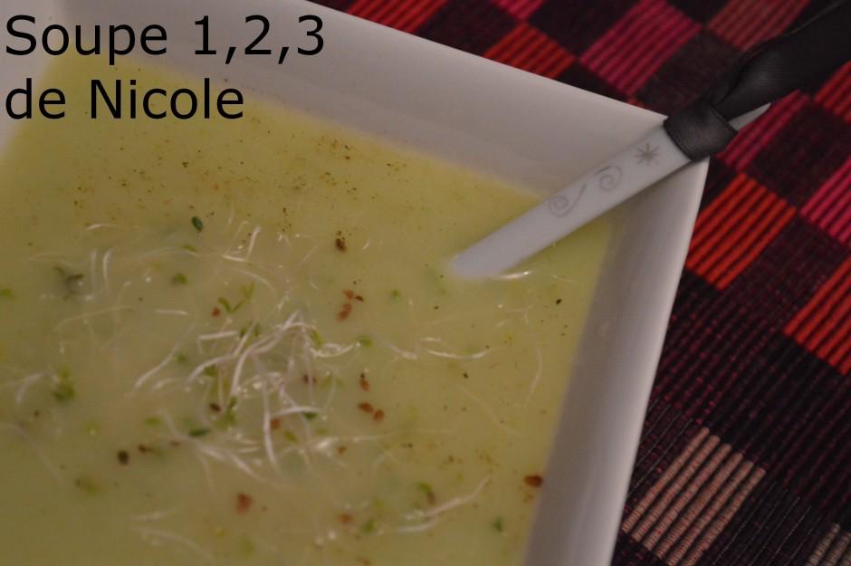 Soupe 1,2,3 de Nicole