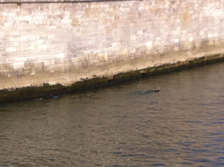 Palmes en Seine !