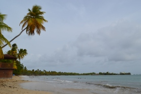 Martinique 2014 (217)