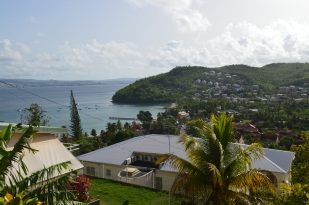 Martinique 2014 (315)