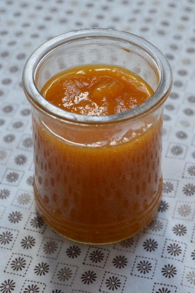 Compotée mangue, melon &  vanille (1)