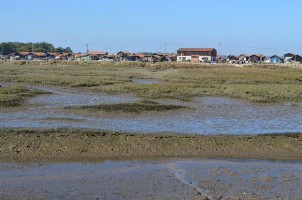 Bassin d'Arcachon Jour 1 (12)