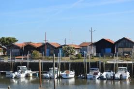 Bassin d'Arcachon Jour 1 (22)