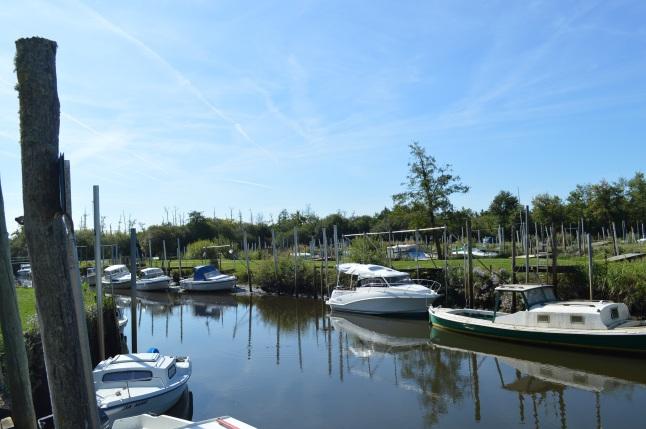 Bassin d'Arcachon Jour 1 (25)