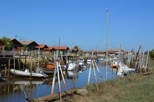 Bassin d'Arcachon Jour 1 (4)