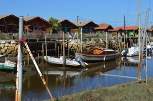 Bassin d'Arcachon Jour 1 (5)