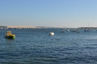 Bassin d'Arcachon Jour 1 (53)