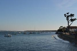 Bassin d'Arcachon Jour 1 (56)