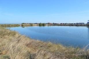 Bassin d'Arcachon Jour 1 (7)
