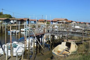 Bassin d'Arcachon Jour 1 (8)