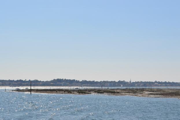 Bassin d'Arcachon - Jour 2 (15)