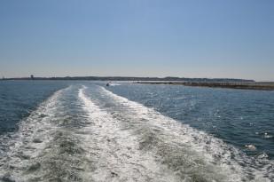 Bassin d'Arcachon - Jour 2 (16)