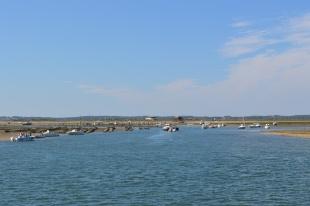 Bassin d'Arcachon - Jour 2 (20)