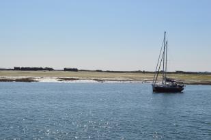 Bassin d'Arcachon - Jour 2 (22)