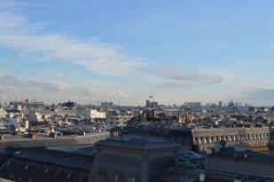 Vitrines féériques & perfect rooftop parisien (3)