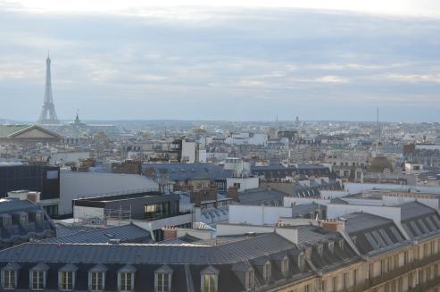 Vitrines féériques & perfect rooftop parisien (5)